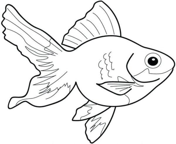 Para colorir esse peixinho.