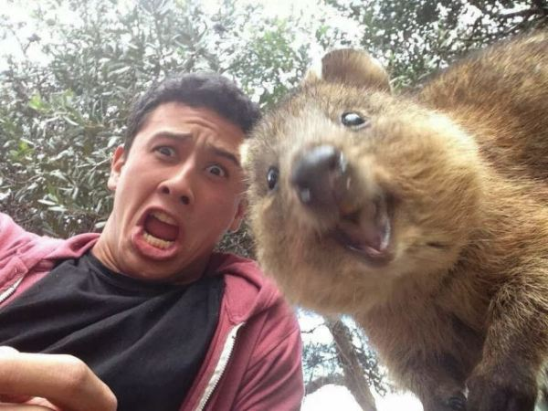 Fotos de pessoas engraçadas com animais