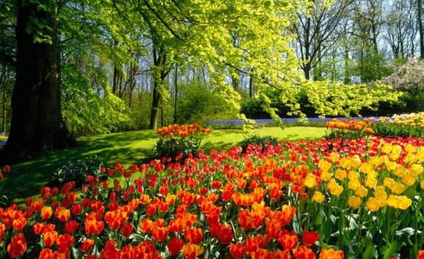 Linda estação da primavera.