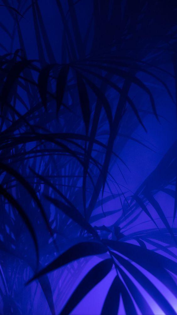 Papel de parede azulado