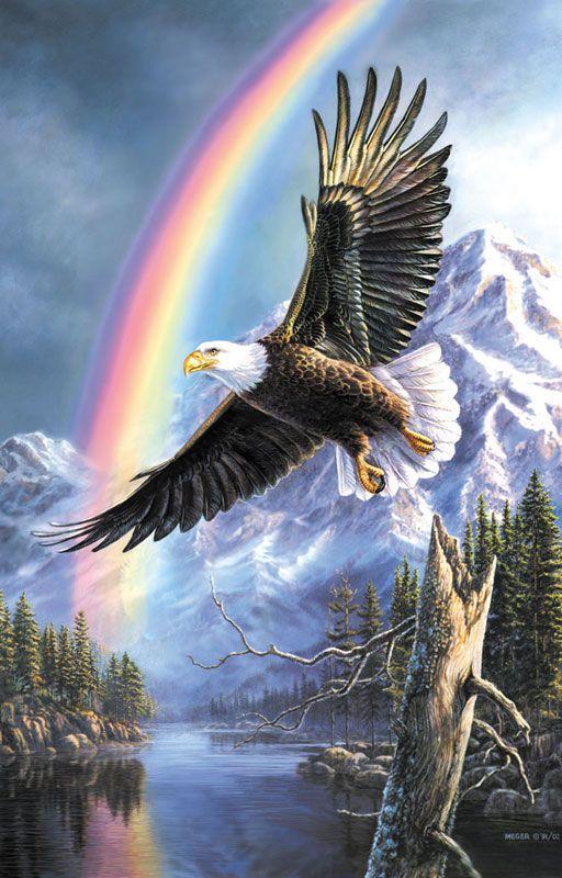 Papel de parede águia