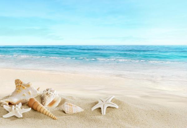 Incrível paisagem do mar.