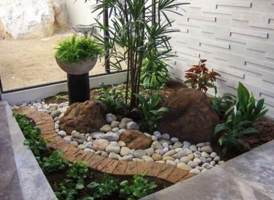 jardim com pedras com plantas