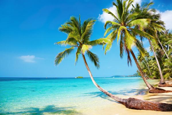 Aprecie a bela vista da praia.