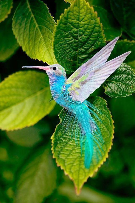 pássaro voando fake
