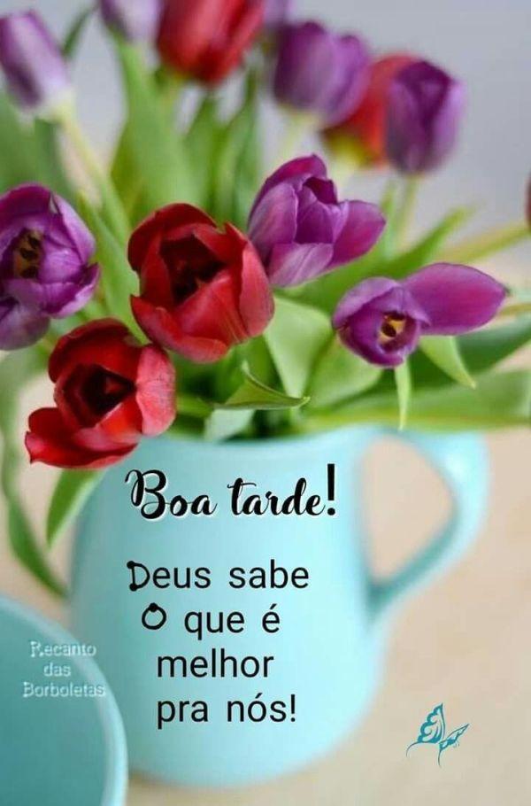 Boa tarde Com Deus linda