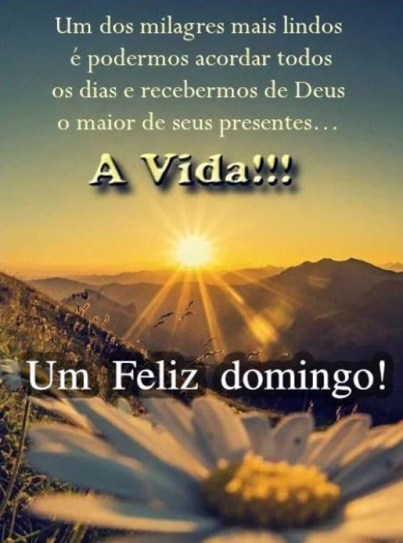 Feliz domingo bom dia