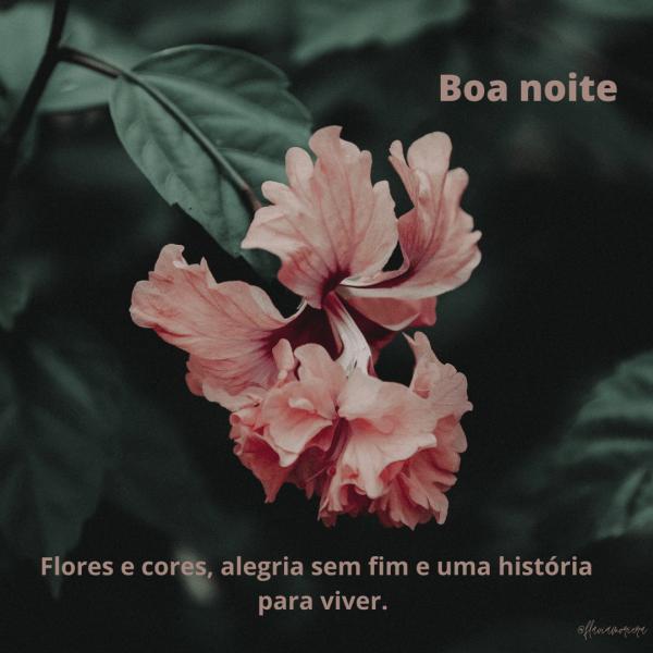 Nova imagem com flores