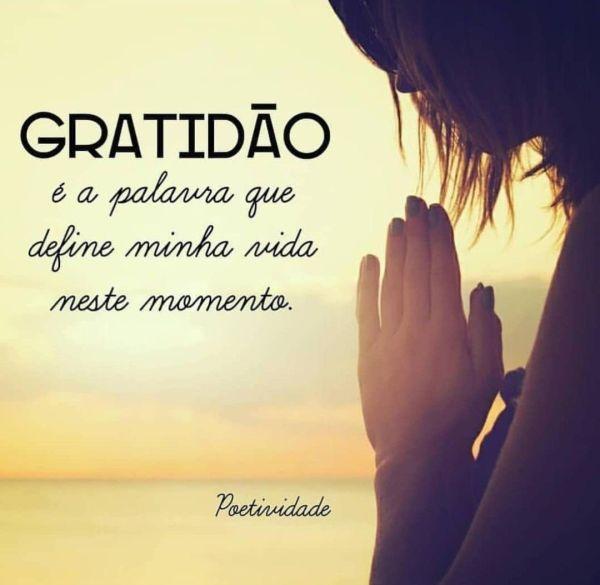 Frase de gratidão