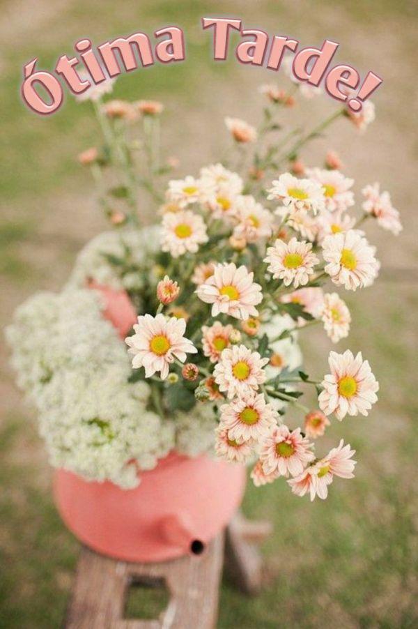 flore de boa tarde