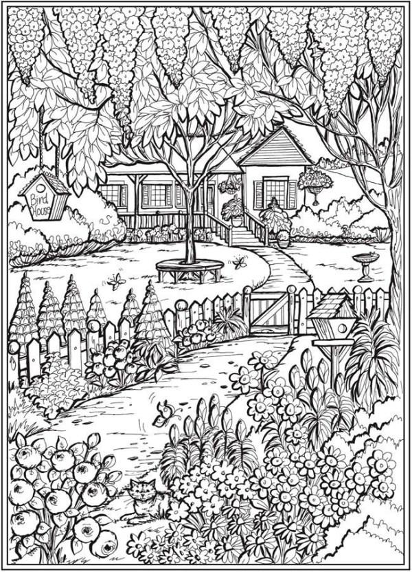 paisagem da natureza casa top