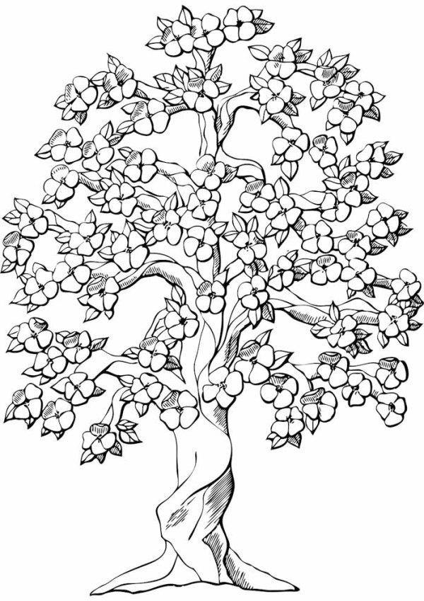 paisagem da natureza arvore florida