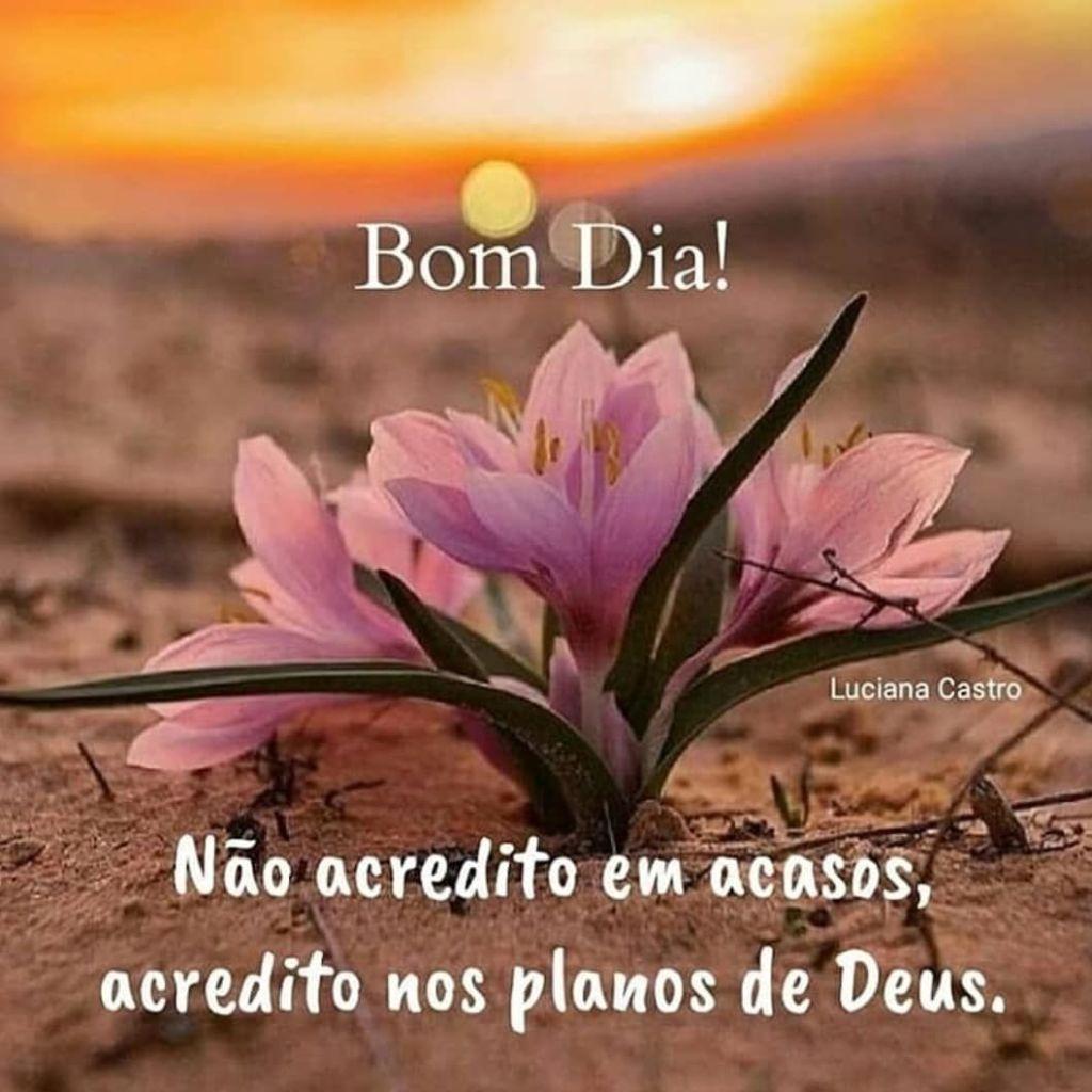 bom dia com Deus  amanhecer