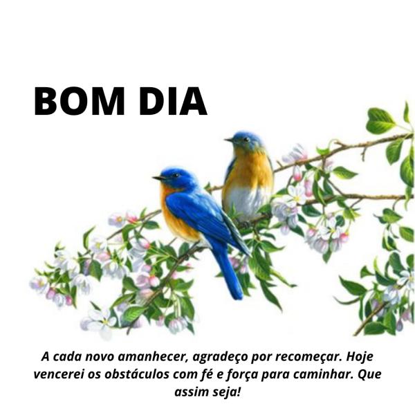 Bom dia com pássaros e flores