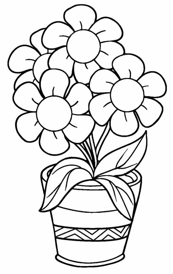 desenho de flores plantadas