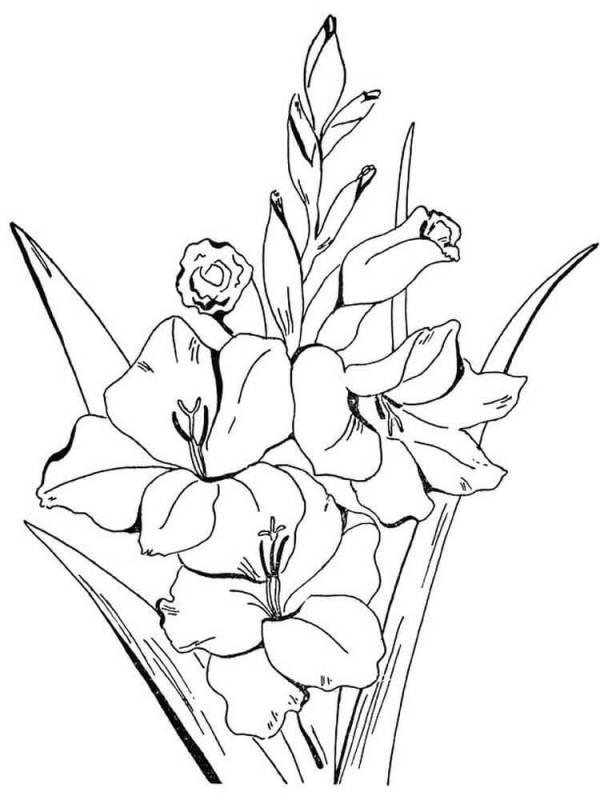 desenho de flores tops