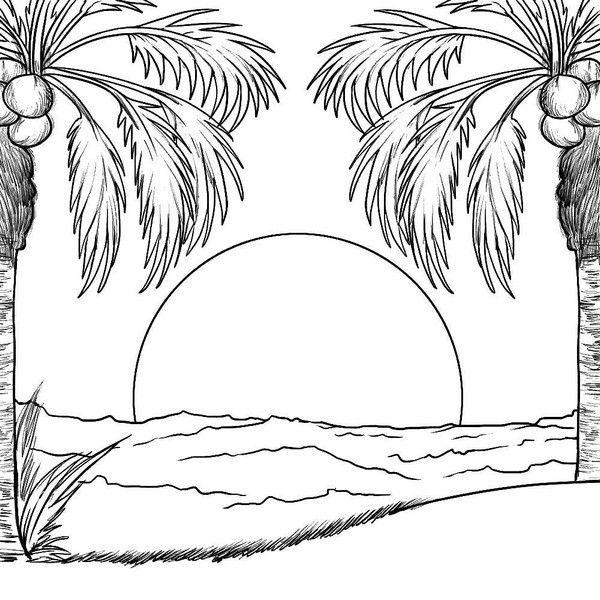 paisagem da natureza solarado