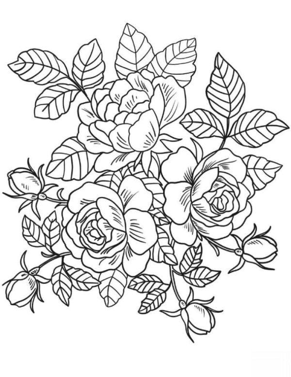 desenho de flores impressionante