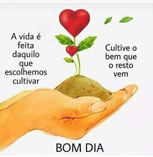 Bom dia! Cultive o bem!