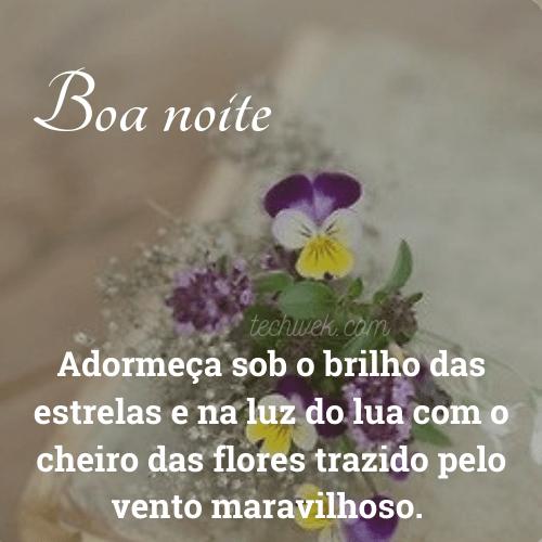 imagem de boa noite para desejar carinho com flores