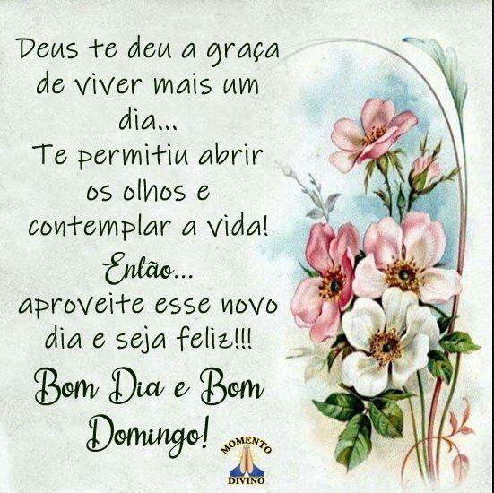 Bom dia e bom domingo com Deus