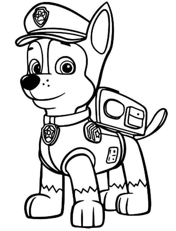 belo Desenhos da Patrulha Canina
