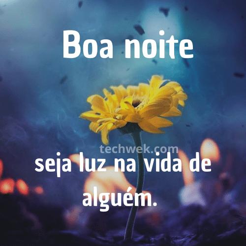 frases de boa noite de flores