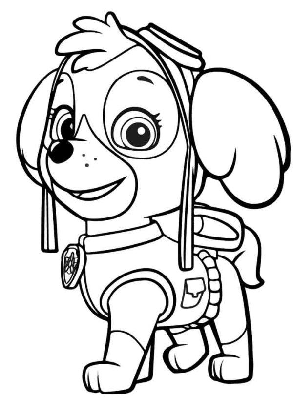 Patrulha Canina na busca de aventura
