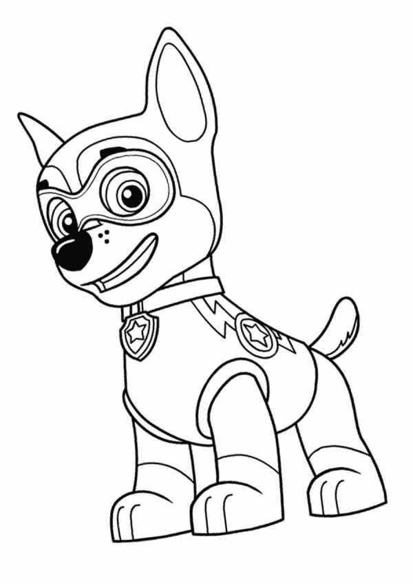 super Desenhos da Patrulha Canina