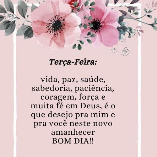 Imagem com flor de mensagem de bom dia terça para Deus abençoar