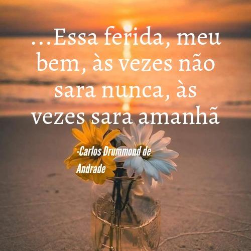 Frase incrível de Carlos Drummond de Andrade