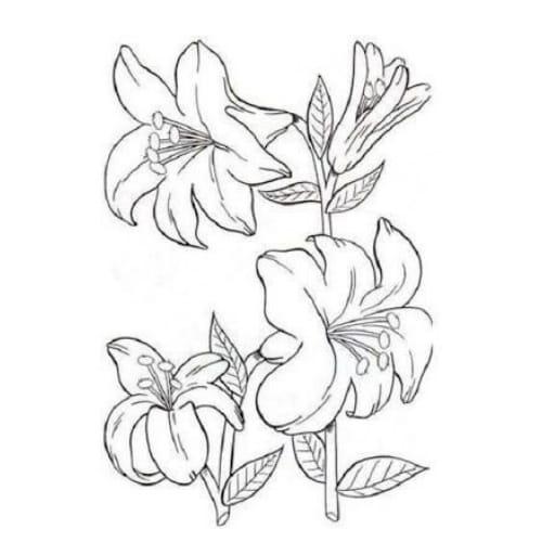 Desenhos excelentes para colorir e imprimir com flores