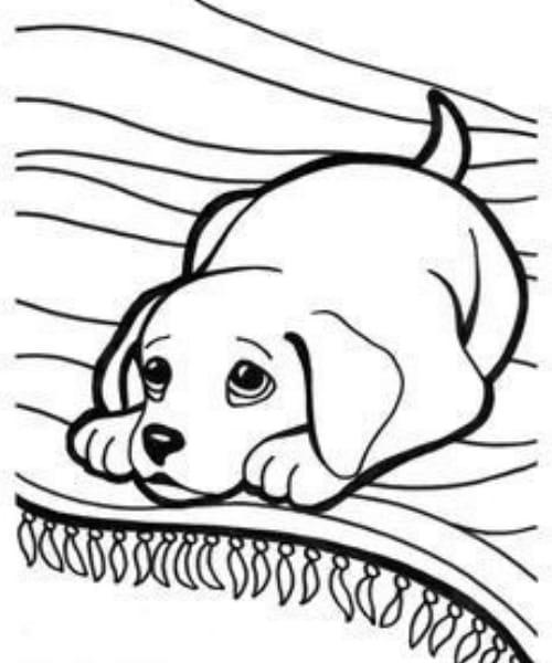 Desenho de cachorro fofo para se divertir colorindo
