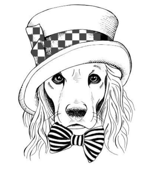 Desenho para se divertir colorindo cachorro fofo