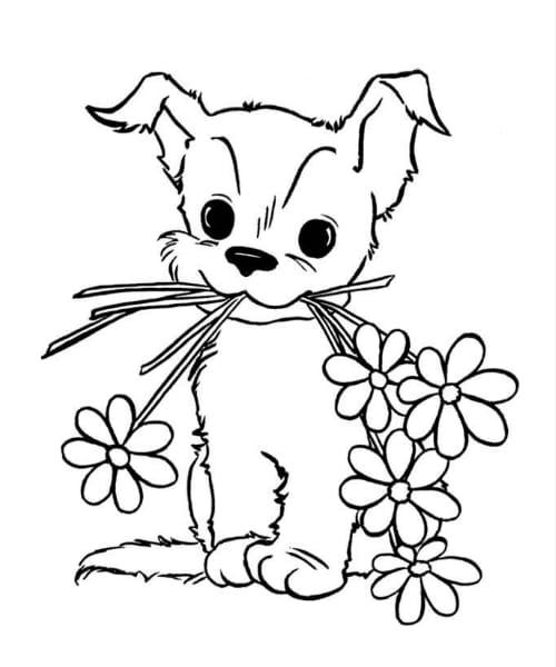 Imagem com desenho lindo e divertido de cachorro fofo para pintar