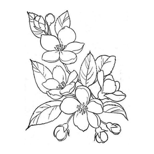 Imagem de desenho com flor para pintar e imprimir