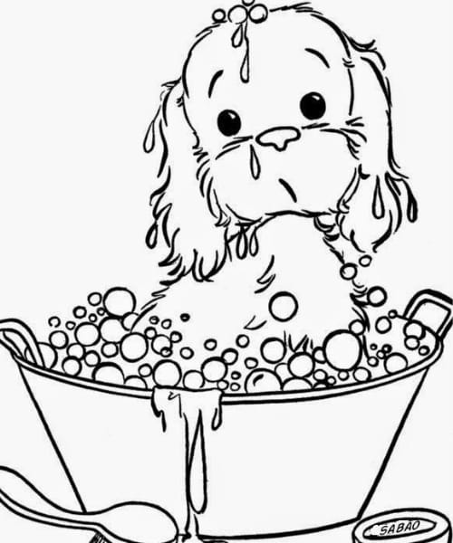 Desenho para crianças colorir e pintar de cachorro fofo