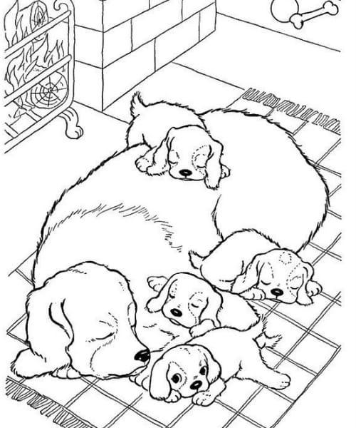 Imagem com desenho de cachorro fofo perfeito para colorir