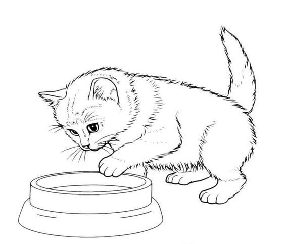Desenhos de gatos para pintar encantador