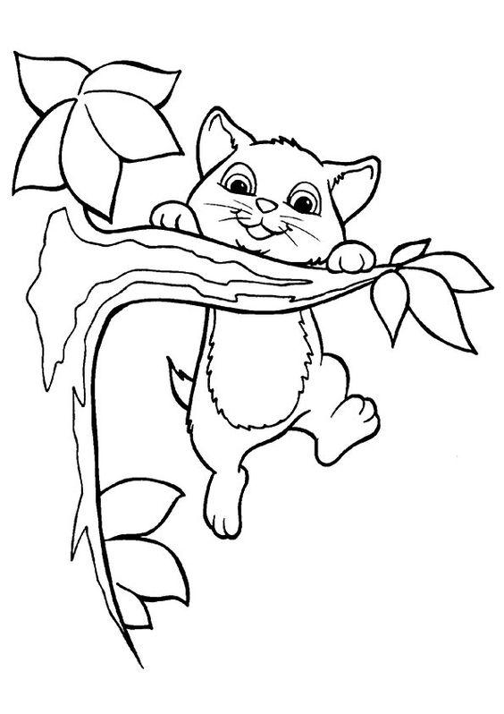 Desenhos de gatos para pintar meigo