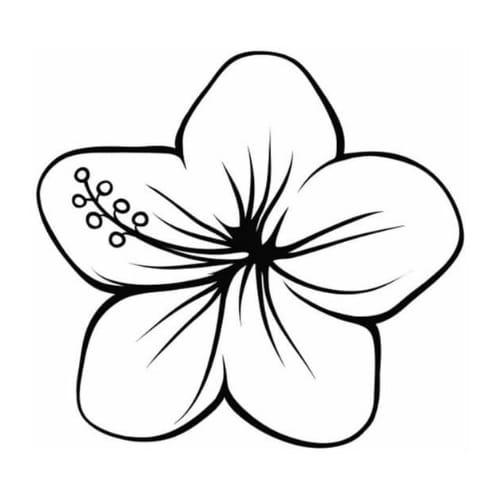 Desenho excelente  de uma linda e bela flor para colorir e imprimir