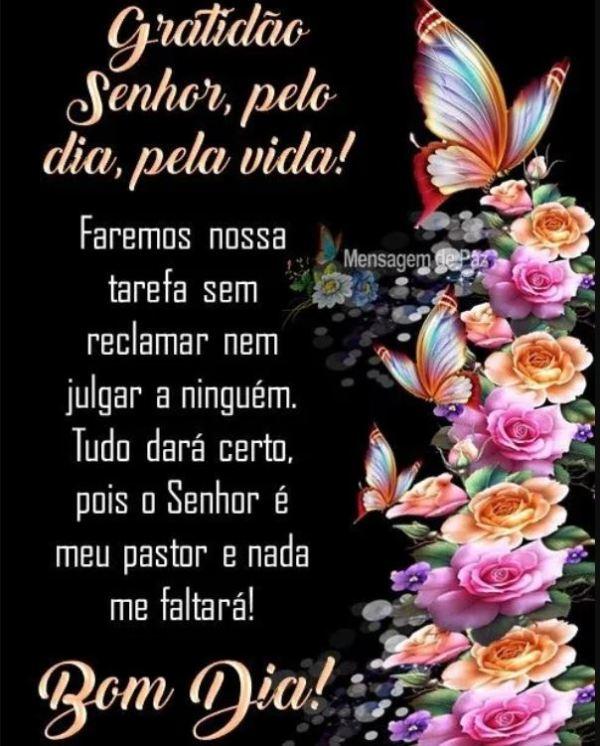 Gratidão Senhor pela vida