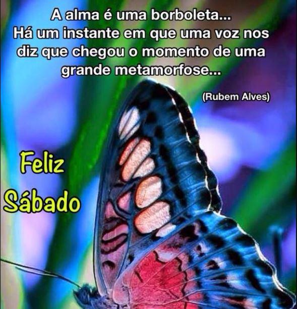 Feliz sábado com borboleta