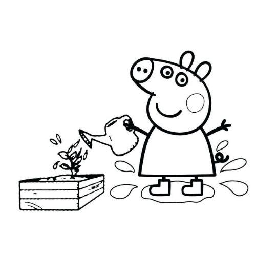 peppa pig para colorir regando