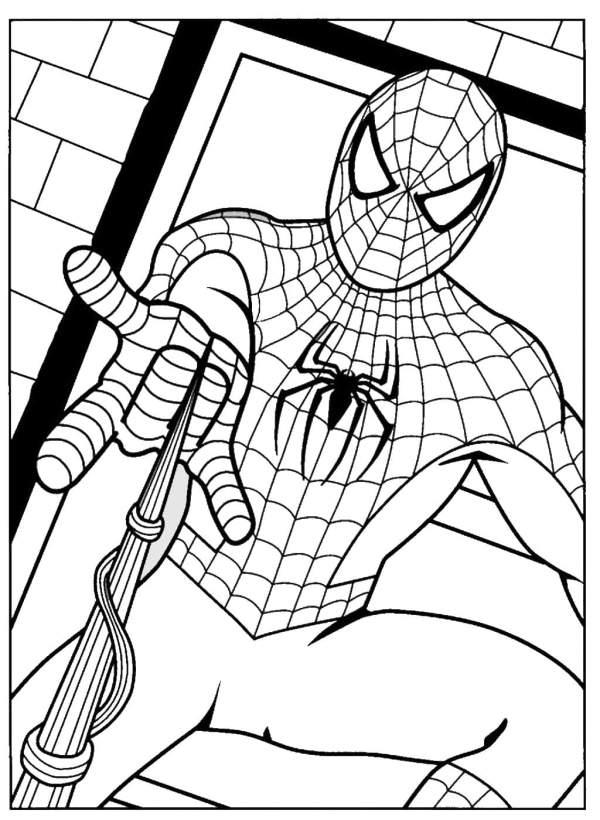 images do desenho homem aranha ara crianças