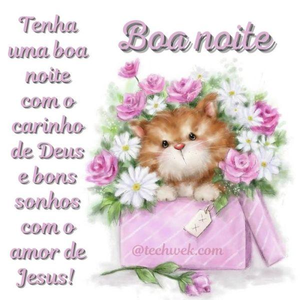 Boa noite com mensagens lindas de Deus