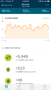 Fitbit Charge HR Activity Tracker Review - Workout Data - Analie Cruz