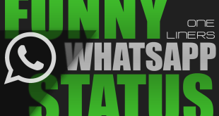 Funny Whatsapp Status one liner