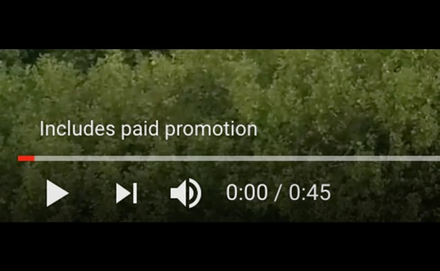 include paid-promotion