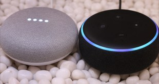 Google Home Mini vs Amazon Echo Dot 3